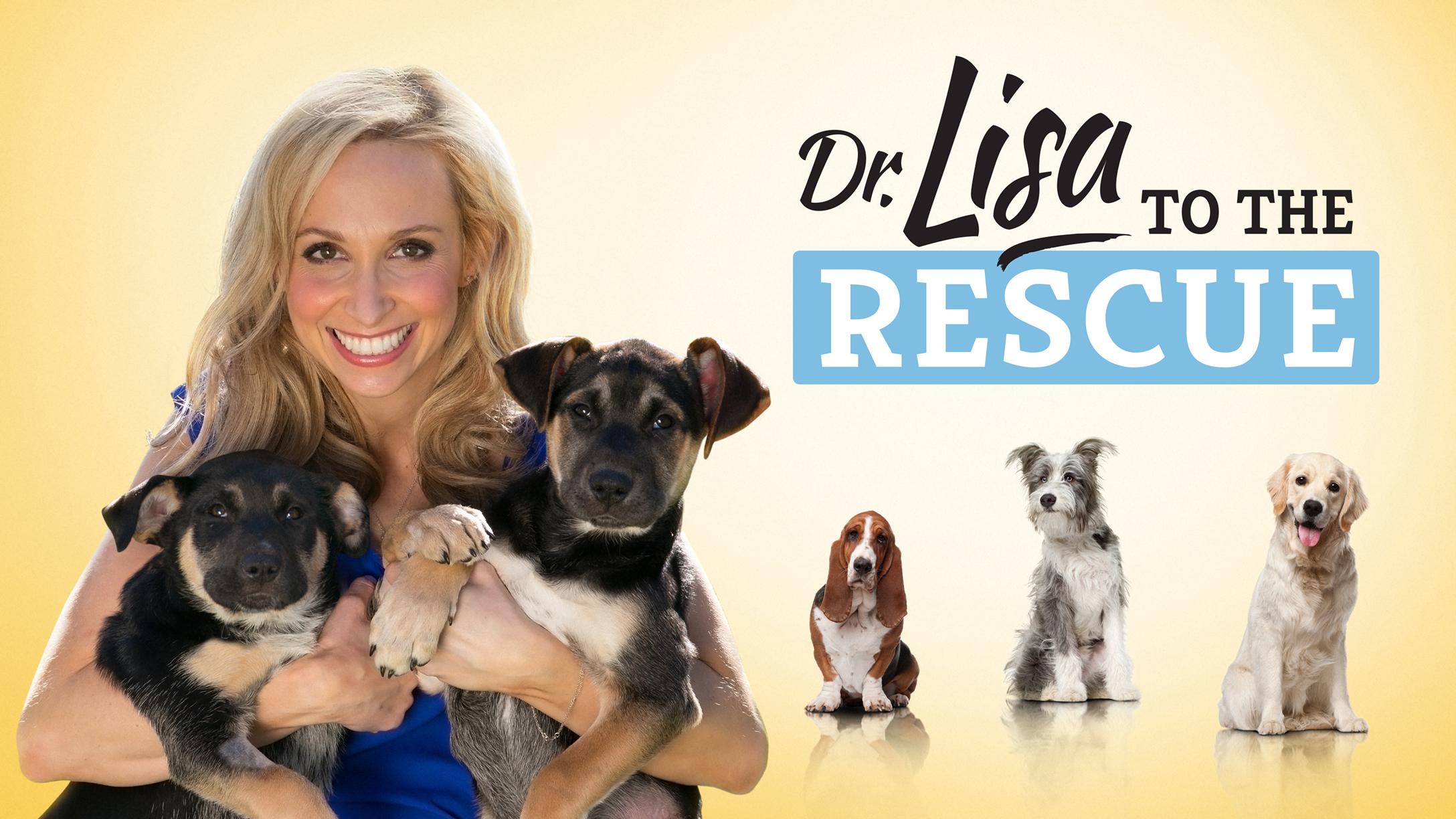 Dr Lisa to the Rescue S1 Key Art 16x9 logo 2176x1224